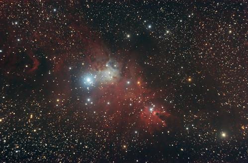 NGC-2264 - Christmas Tree Cluster