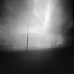 Zero 2000 2 R2F3 - Posts (Adam Clutterbuck) Tags: 6x6 movement pinhole posts zero2000 oe zeroimage sixbysix greengage adamclutterbuck showinrecentset openedition