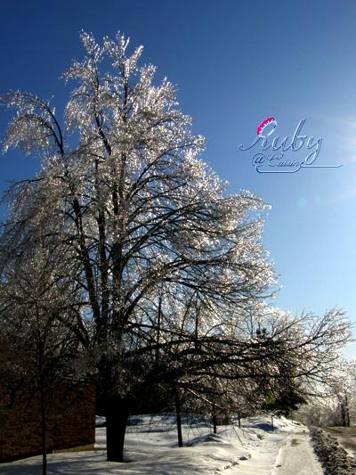 Freezing_rain_11