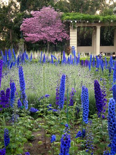 Alcazar Garden, Balboa Park, San Diego, California