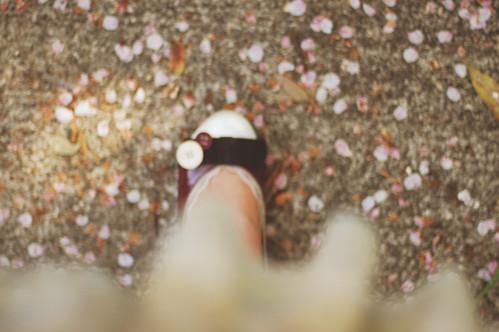 Fotografía de una pierna que termina en un zapatito pisando un suelo lleno de pétalos de flores