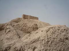P1010664 (whereispavel) Tags: iraq nippur