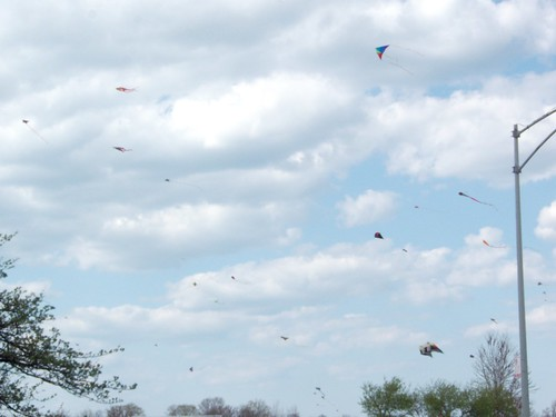 kites at the lakefront