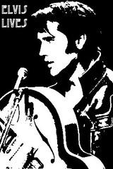 Ariel Ferrer / Elvis lives (angeni12) Tags: ariel ferrer