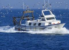 Catalí Segon en acción (CKR 84) Tags: catalunya tarragona pescadores marmediterráneo l´ametllademar golfodesantjordi catalísegonenacción