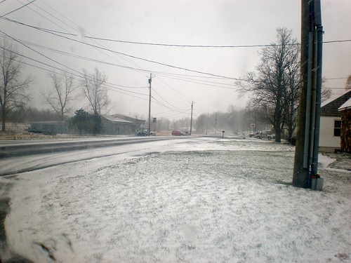 Snowy Palmyra