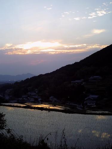 棚田の夕陽(トイカメラ)@明日香村-02