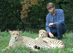 """Dave and Cheetahs • <a style=""""font-size:0.8em;"""" href=""""http://www.flickr.com/photos/49635346@N02/4557896158/"""" target=""""_blank"""">View on Flickr</a>"""