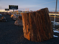 Holbrook, AZ (choyuming0619) Tags: holbrook azholbrook