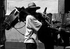without face (gianluca_cozzolino) Tags: world old portrait horse face 35mm blackwhite reflex eyes nikon shadows emotion cuba dia bn emotions nikonfm2 diapositiva reportage oldmen vecchio twr analogic diapo gianluca cozzolino nikonblack gianlucacozzolino nikonanalogic