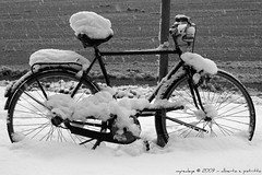Let it Snow (myrealeye photography) Tags: winter blackandwhite snow bicycle torino neve inverno turin biancoenero bicicletta