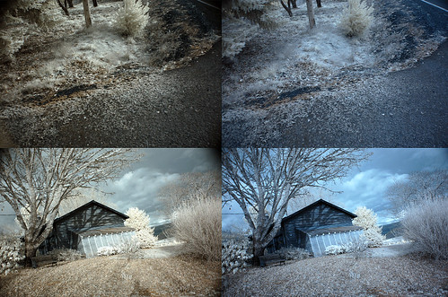 The image on the left was taken with two IR filters, and the image on the right was only taken with one.  Red/blue channel swapped as well.  Nikon D50