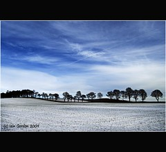 Simple Scottish Winter Scene (Magdalen Green Photography) Tags: blue trees winter snow nature landscape cool dundee dyke tayside coolblue iaingordon simplescottishwinterscene