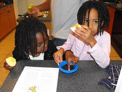 Science Lesson: Plants & Seeds