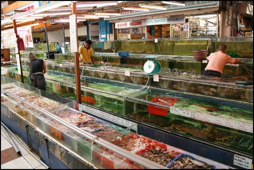 seafood-tanks