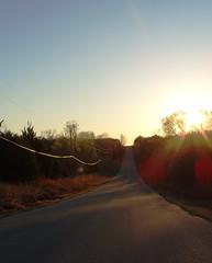 (Julia TortoiseHugger) Tags: road sunset sun oklahoma glare dusk country norman lensflare flare powerline ok highway9 slaughterville