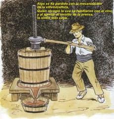 San Juan: Cata de vinos artesanales