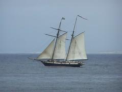 sails up 3