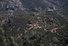 Pinnacles 2009 097