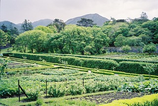 The Gardens at Kylemore Abbey