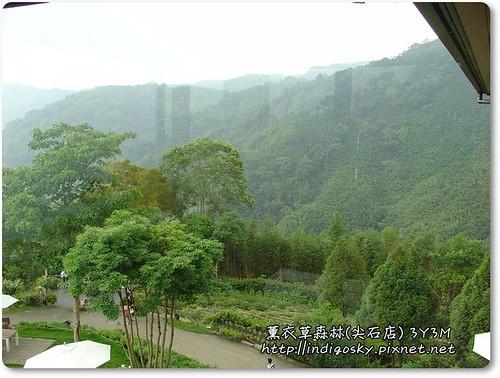 新竹薰衣草森林(尖石)-092