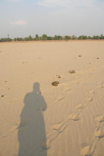 157.沙洲閃耀著我的倒影