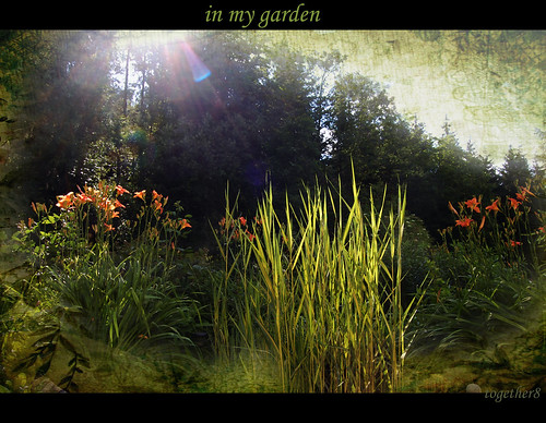 ~ secret garden ~ by together8 ~~ IN & OUT~