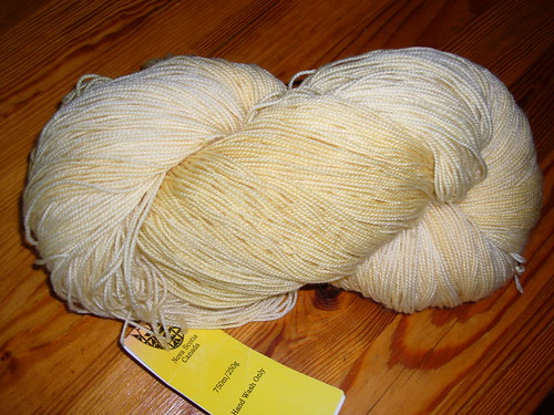 Huge skien of beautiful Fleece Artist Merino