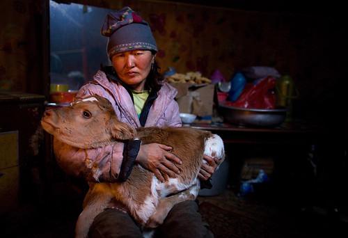 battsetseg mongolia