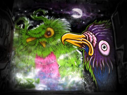 lukas-owl5