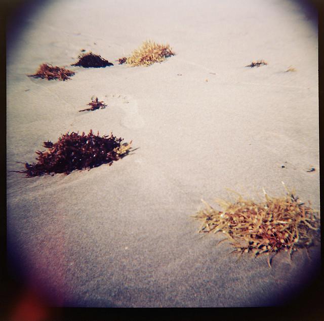 beach_diana01