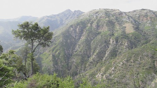 Highway 1 to Cone Peak