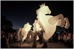 Enlighten - Out of control puppet horses (Leo in Canberra) Tags: australia canberra act enlightenfestival march2014 puppethorses