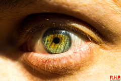 eye 2 (Richard Hayward Photography