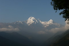 P1030263 (seasidesophie) Tags: nepal annapurnabasecamp