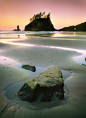 Second Beach at Sunrise, La Push Washington, Olympic National Park (Edward Mendes) Tags: ocean morning travel trees sunset usa seascape color reflection green mamiya film beach nature water rock vertical sunrise landscape outdoors photography coast living washington nationalpark sand colorful fuji hiking earth tide tripod wave adventure velvia zen olympic polarizer olympicnationalpark westcoast eco climate homedecor mothernature washingtoncoast secondbeach mamiya645 workshops lapush seastacks waterscape pristine enviroment gpc cokin godscreation oceanscape imagepoetry m645 northernwashington specnature photographyworkshops edwardmendes yourwonderland edwardmendesphotographycom