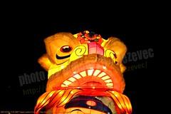 2007-03-03 1118 2007 Taipei Lantern Festival (Badger 23 / jezevec) Tags: capodannocinese  taipei   taipeh tapeh   taiwan     formosa taiwn republicofchina lanternfestival    shangyuanfestival   chineselantern festival lights chaingkaishek  hai   yearofthepig pig boar colorful float parade badger23   aonuevochino     lyhtyjuhla chinesischeslaternenfest ftedeslanternes 2007 20070303 night chiangkaishekmemorialhall