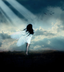 My angel (JessicaOssa {Camino Studios}) Tags: light sun bird angel fly wings jessica ossa lightiq