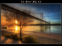 Tejo - like a bridge over quiet water :: HDR (raul_pc) Tags: tree portugal water gua canon eos lisboa lisbon sigma raul tejo 1020 rvore ponte25deabril soe hdr 450d pontesobreotejo ilustrarportugal