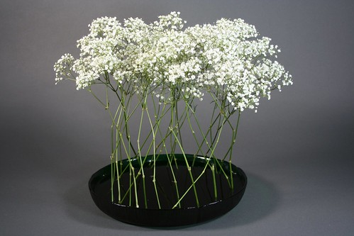Ikebana-Using one material