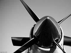 "motore di vento (Guido ""Weedo"" Benedetto) Tags: light bw plane canon reflections photography photo aircraft pale pilatus guido aereo riflesso benedetto paracadutisti ogiva elica pc6 cumiana mnomotore guidobenedetto"