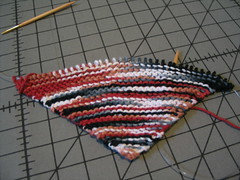 Multidirectional Dishcloth