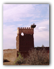 Vue imprenable (Solea20) Tags: new nid tour best ruine maroc marrakesh select bestofthebest the cygognes fineartphotos mywinners citrit amazingamateur theunforgettablepictures proudshopper awardtree goldenheartaward alwaysexc novavitanewlife musicsbest flickrenvythebesttm