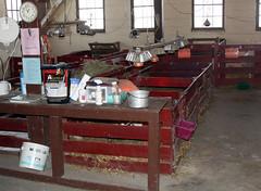 Lambing jugs