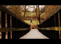 WOODEN PATHWAY (Darren Speak) Tags: wood man path