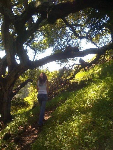kate in orinda hills