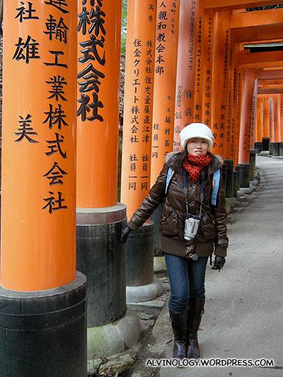 Walking through a long stretch of Torii