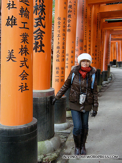 Walking through a long stretch of Torii