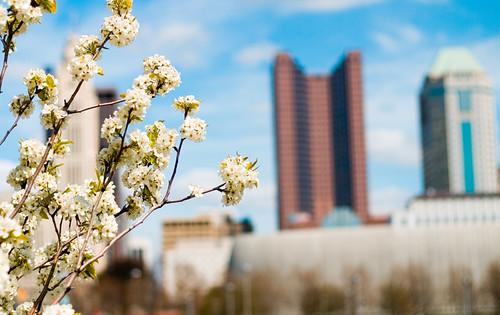 Spring in Columbus