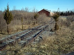 Another Train Building, Unused Tracks... Green Tree That White Deer Eat... (PilgrimElaine) Tags: railroad summer history grass wow woods tracks bluesky brush nostalgia april shrubs 2009 abandonment exciting senecaarmydepot armydepot railroadcloseup